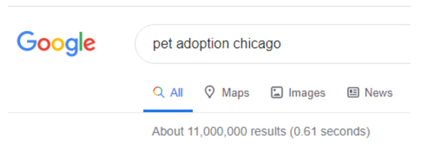 Google search result pet adoption Chicago